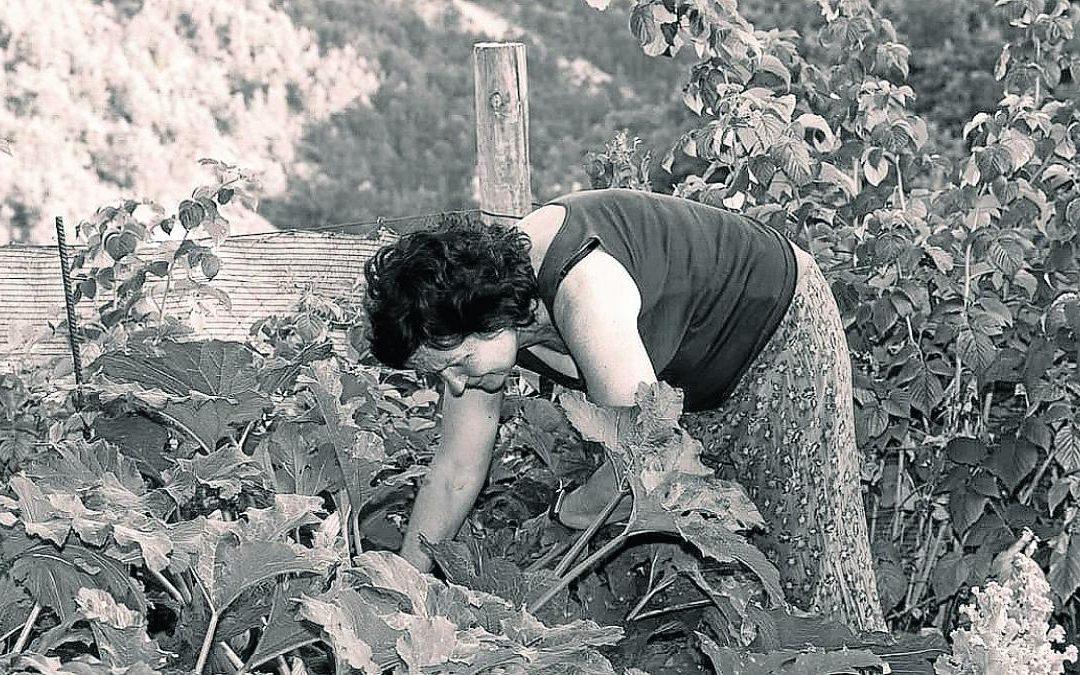 Las mujeres desean seguir permaneciendo en el pueblo en los próximos años, siendo el sector agrario el que más arraigo genera