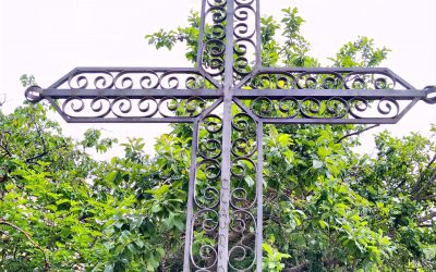 Coscojuela, un pueblo con nombre de árbol